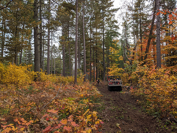 a UTV on a path that has been cleared through the forest to create fireline