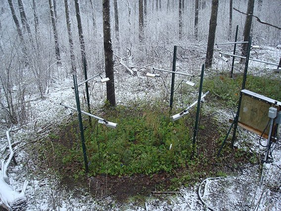 for warming and monitoring devices above a green plot of vegetation with snow surrounding the rest of the area